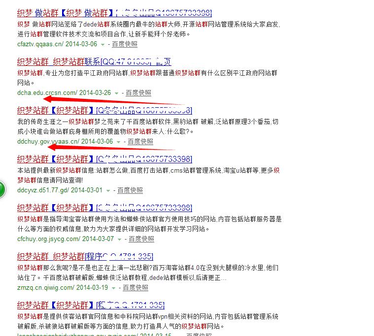 站群系统 霸占百度搜索50页,站群系统为什么还能存活