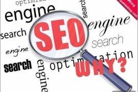 资讯类门户类网站的优化应该如何做