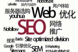 一个新网站,新手的优化思路和工作内容,请帮忙指点